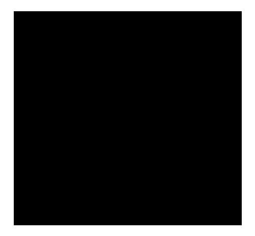 Aurora Kino